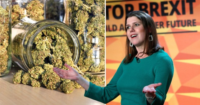 The Liberal Democrats have pledged to legalise cannabis if they win the general election