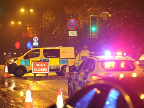 Woman, 75, dead and man, 79, fighting for life after hit-and-run
