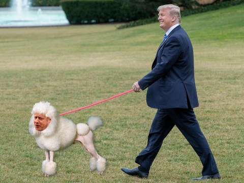 Boris Johnson 'will be Donald Trump's poodle if he wins election'
