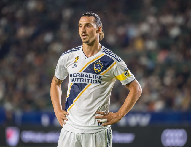 Zlatan Ibrahimovic is set to end his time with LA Galaxy
