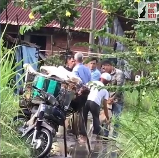 Shocking video shows dog being force-fed 'drain water' so it can be sold for meat in Vietnam