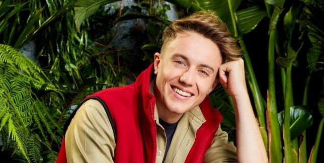 Is I'm A Celebrity star Roman Kemp single or does he have a girlfriend?