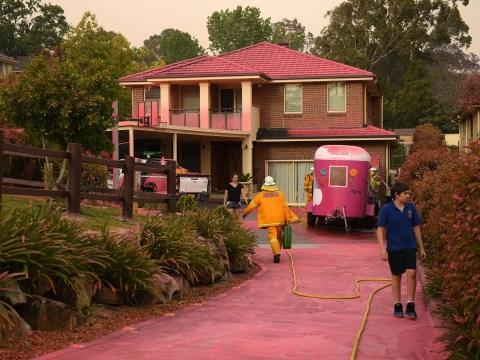 Neighbourhoods turned pink after 'catastrophic' bushfires burn across Australia