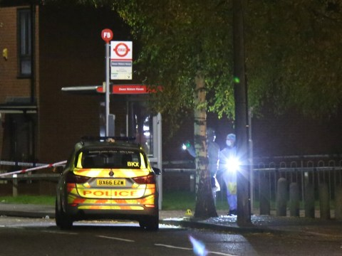 Teenager stabbed to death in fight outside block of flats in east London