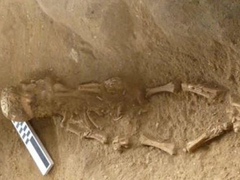 Archaeologists find babies buried wearing skulls of other children on their heads