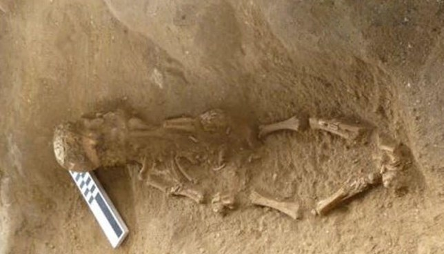 Baby skeletons uncovered wearing the skulls of other children