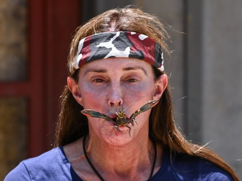 I'm A Celebrity recap: Caitlyn Jenner gags on a cow's eye and Cliff Parisi's luxury item is the best thing ever