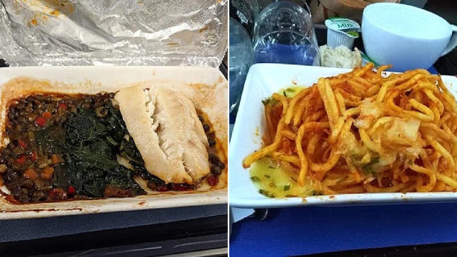 Split image of two airplane meals looking disgusting, including one with fish and the other with pasta and cheese