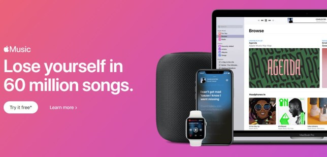 Apple Music offers 60 million songs and usually costs £9.99 a month (Apple)