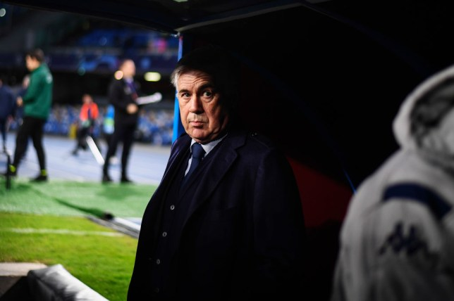 Carlo Ancelotti has been linked with the Arsenal manager's job after he was sacked by Napoli
