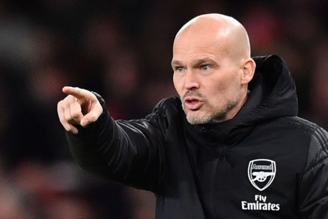 Arsenal told to sack Freddie Ljungberg after Man City defeat