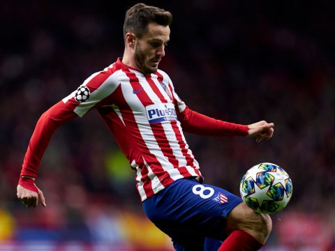 Atletico Madrid's Saul Niguez says Liverpool play like animals ahead of Champions League clash