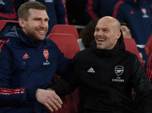 Freddie Ljungberg laughs with Per Mertesacker on the Arsenal bench