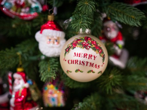 When should you put up your Christmas tree and why do we have trees in our home in December?