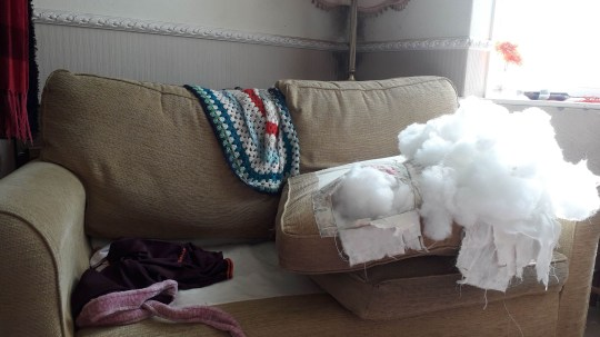 A settee destroyed by Porridge