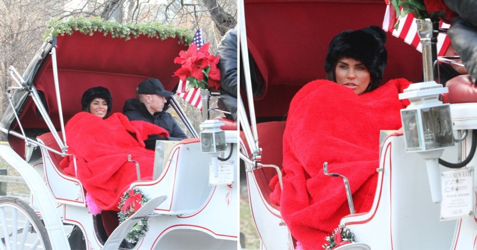 Katie Price splashes out on romantic horse and carriage ride with Kris Boyson despite bankruptcy drama