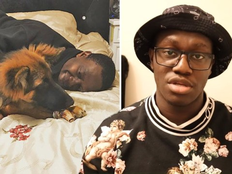 KSI's brother Deji says dog Tank will be 'destroyed' after biting elderly woman as he pleads for fans' help