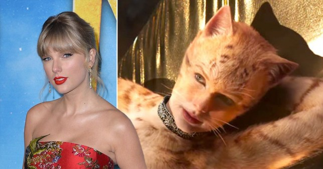Taylor Swift Needed Personal Bodyguard While Shooting Cats Amid Stalker Fears Metro News