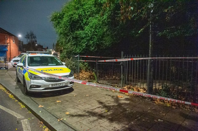 ?? Licensed to London News Pictures. 05/12/2019. London, UK. A Metropolitan Police car inside a cordon at the Black Boy Lane entrance of Chestnuts Park where a 14-year-old girl was allegedly raped. The victim was allegedly approached by a man who tried to engage her in conversation before raping her. The victim later alerted a family member who called police at 19:10 GMT on Thursday, 5 December 2019. Photo credit: Peter Manning/LNP