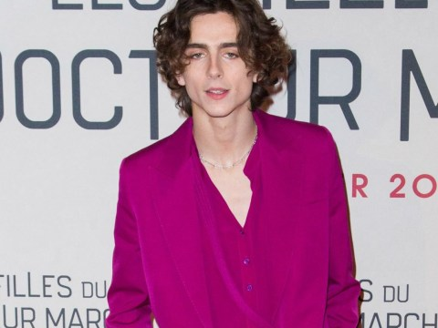 Timothee Chalamet steals all our wigs in pink suit at Little Women premiere