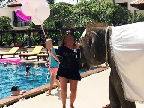 Baby elephant forced to entertain guests at hotel pool party