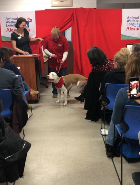 Rico at the auction where he earned $4000 from his paintings