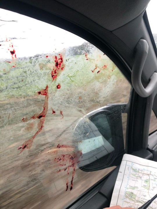 / re: altercation took place on Boxing Day near Kirk Smeaton in North Yorkshire Sheffield Hunt Saboteurs were out in force protesting against the annual hunt North Yorkshire Police said it is investigating but enquiries are at an early stage