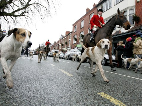 Boxing Day hunt forced to ditch 250 year tradition as they didn't get proper licence