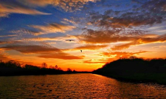 Mandatory Credit: Photo by Paul Marriott/REX (10514811k) A beautiful orange sky, just before sunset, at Nene Park, Peterborough Seasonal weather, Peterborough, Cambridgeshire, UK - 30 Dec 2019