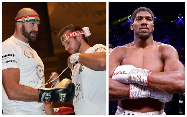 Tyson Fury's trainer Ben Davison has spoken out on Anthony Joshua's win over Andy Ruiz Jr