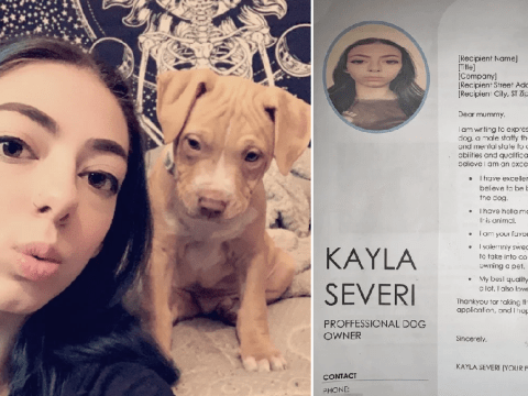 Teenager comes up with ingenious idea to get herself a puppy by writing a CV to her mum