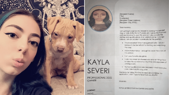 Kayla Severi with her puppy Bandit on one side, and her CV on the other