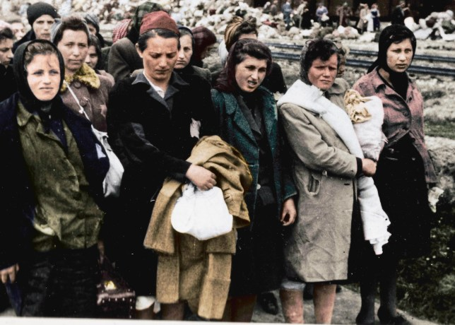 Woman recalls moment she was sent to concentration camp on her wedding day in Auschwitz: Untold in Colour