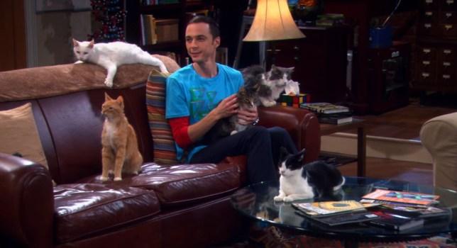 The Big Bang Theory: Sheldon's hypocrisy to Leonard exposed by fan in asthma plot hole