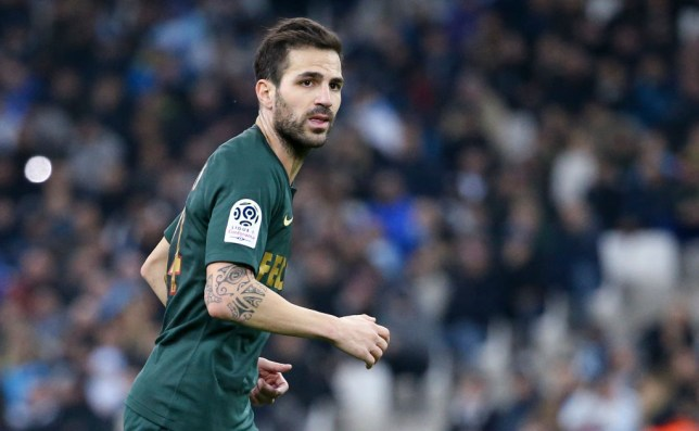 Former Chelsea and Arsenal midfielder Cesc Fabregas jogs while playing for Monaco