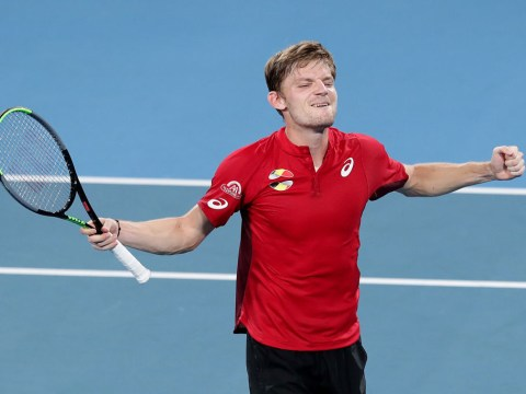 David Goffin reacts to shock ATP Cup win over Rafael Nadal