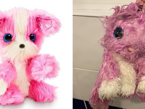 Parents are not impressed with £25 Scruff-a-Luvs toy that 'doesn't look like the ad'