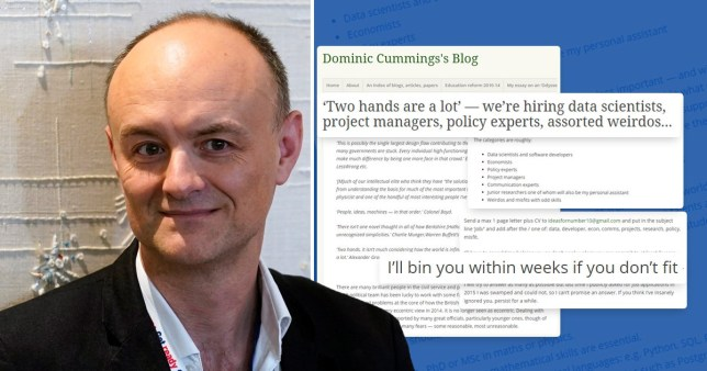 Dominic Cummings' bizarre blog