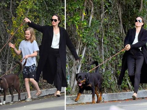 Angelina Jolie walks her dogs as Brad Pitt honours 'good friend' Jennifer Aniston at Golden Globes