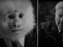 David Lynch interrogates talking monkey in surprise new Netflix short film