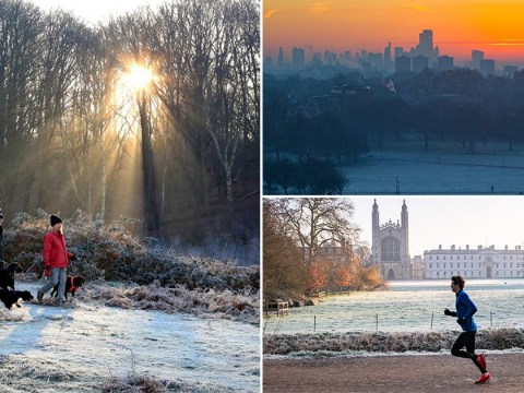 Winter sunshine brings welcome break from freezing fog as skies start to clear