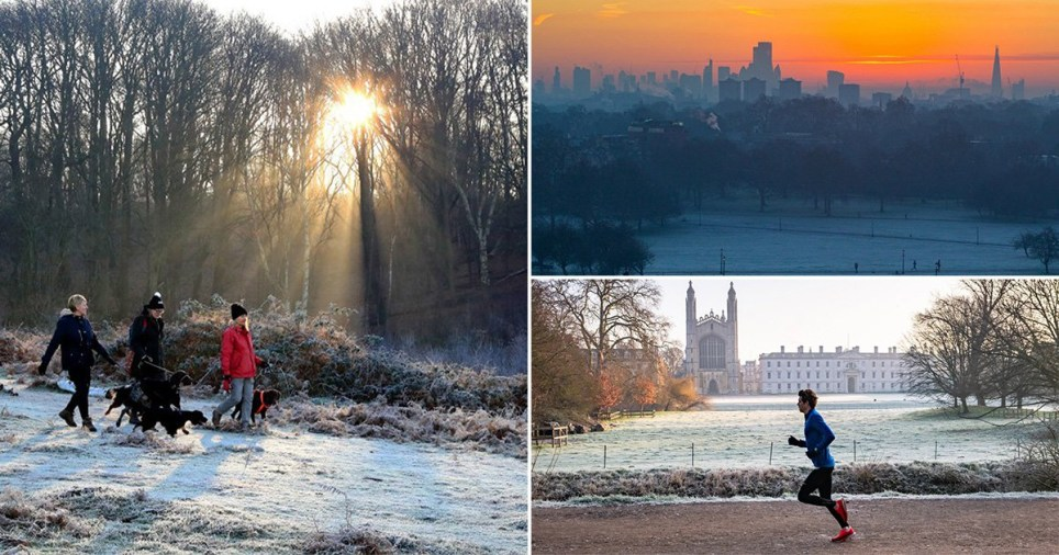 These stunning photos of the winter sunshine mark an end to a week of miserable weather