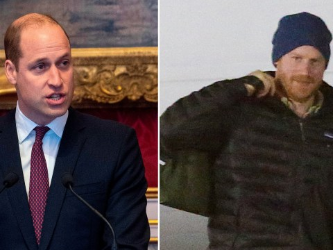 Prince William left to host wildlife summit alone as Harry jets off to Canada