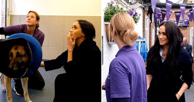 Meghan Markle reveals secret visit to animal charity after quitting royal life