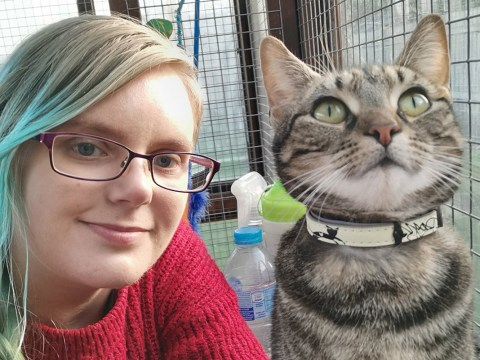 Woman who has to sleep up to 22 hours a day finds hope fostering cats in need