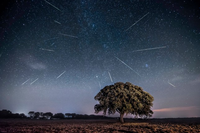The Perseid meteor shower is one of the brightest of the astronomical calendar (Credits: Getty Images/500px)