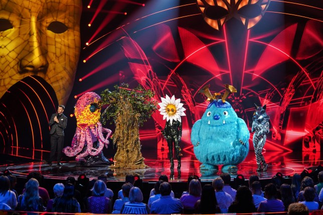 The contestants on The Masked Singer