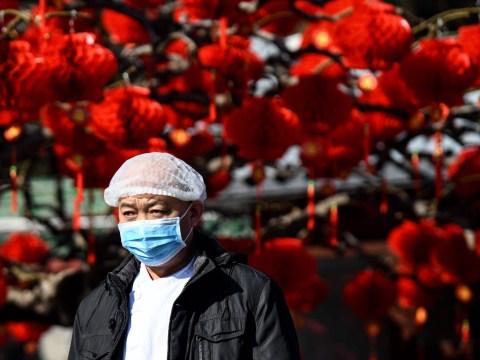 Beijing cancels Chinese New Year celebrations as panic over coronavirus grows