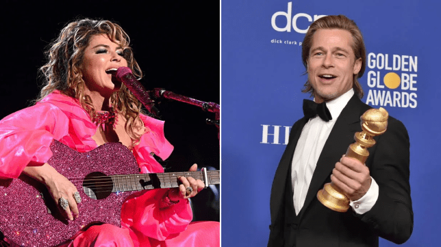 Brad Pitt has been trying to impress Shania Twain all this time and she's loving it