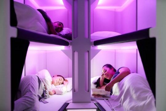 The Air New Zealand Economy Skynest